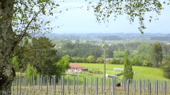 Embedded thumbnail for Point Bush Estates - Promotional Video
